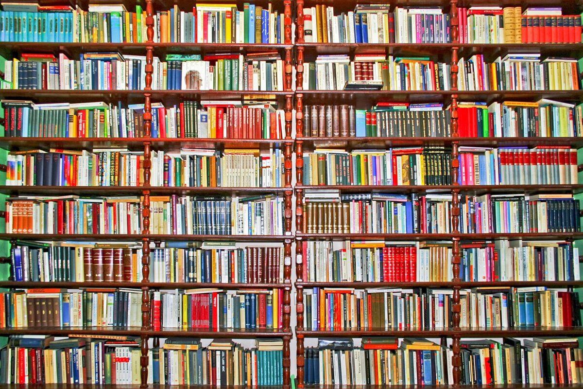 10 Black Books to Read During Quarantine by Angela N. Carroll