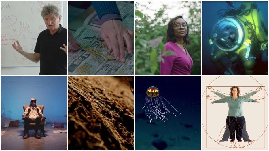 Eight Nonfiction Films Combine Art, Science, Storytelling:  Sundance Institute | Sandbox Fund Grantees
